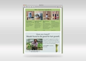 wasabi-news-emarketing-300x212 wasabi-news-emarketing